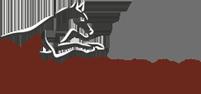 Logo Masterdog Hundezusatzfutter